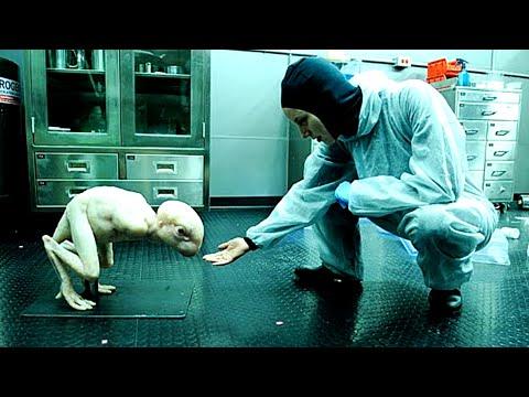 5 Animales que Fueron Creados por el Ser Humano (LABORATORIOS)