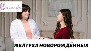 Желтуха новорожденных - Др. Елена Березовская -