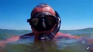 Великолепие подводного мира Азовского океана.(Коралловые рифы, акулы киты и морские черепахи., 2015-09-13T21:51:31.000Z)