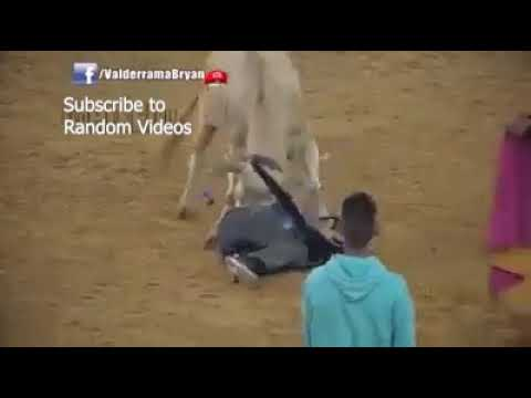 Dangerous Bull Fight Accidents Compilation Lucky and Funny People Fail Video Clips