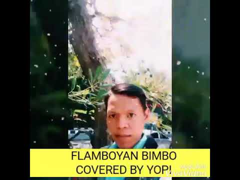 FLAMBOYAN BIMBO COVERED BY YOPI