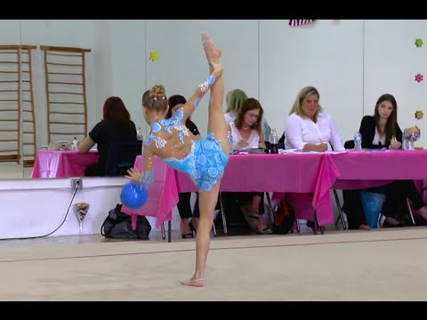 level 8 state gymnastics meet florida