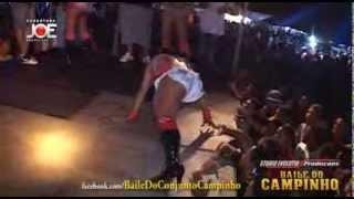 Baile do Campinho - Jaula das Gostozudas - Mc Britney - dia 18_01_2014 Mp3