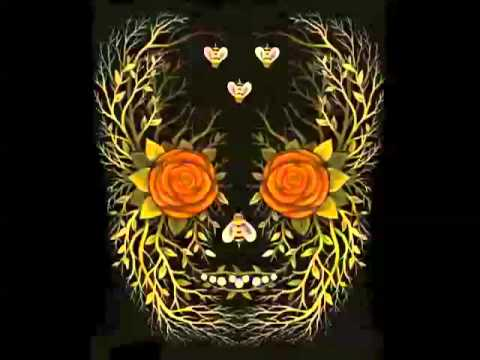 Young Widows - The Muted Man