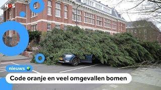 Storm Ciara trekt over Nederland