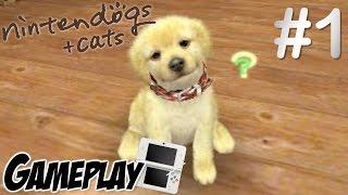 Nintendogs + Cats (Golden Retriever) Gameplay #1 [ITA]