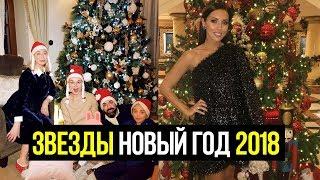 В ЧЕМ РОССИЙСКИЕ ЗВЕЗДЫ ВСТЕРИЛИ НОВЫЙ ГОД 2018