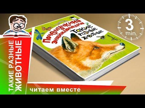 Энциклопедия Аванта+ - Страны. Народы. Цивилизации - YouTube