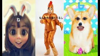 中尾明慶 仲里依紗 instagram story 23 & 24.11.2017 , 仲里依紗 中尾明...