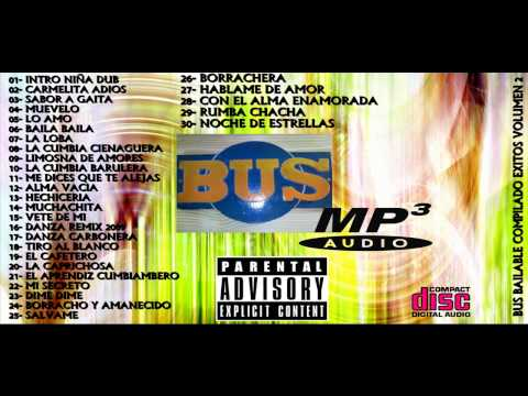 Bus Bailable Cd Vol 2 - 2009