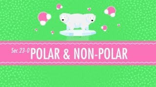 Polar & Non-Polar Molecules: Crash Course Chemistry #23