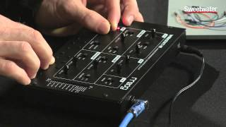 Using the Moog Werkstatt with Ableton Live - Sweetwater Sound