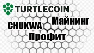 Turtlecoin Смена алгоритма Майнинг Профит