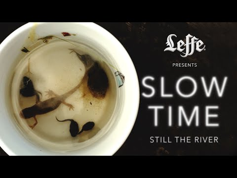 Leffe presents: SLOW TIME - Still The River
