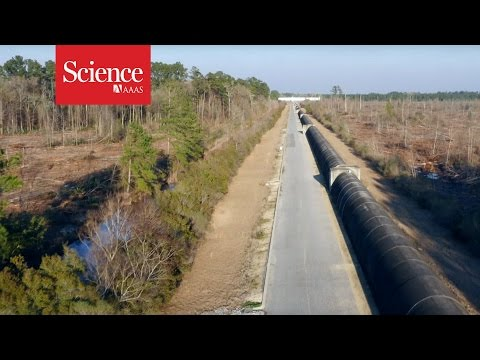Take a whirl above the massive LIGO gravitational wave detector