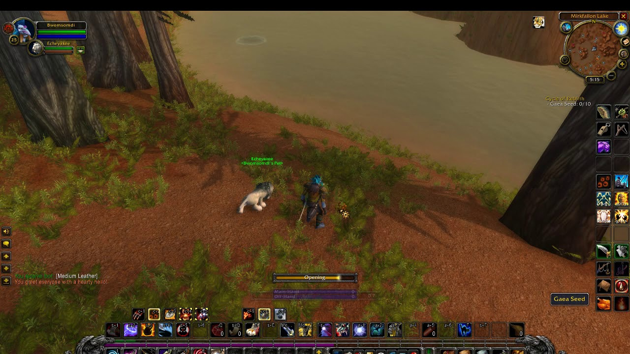 Vanilla WoW Quest Cycle of Rebirth