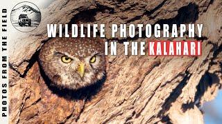 Kgalagadi Transfrontier Park  Wildlife Photography Vlogs EP5
