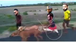 Babu Mann funny video//BABU MAAN tempu//Moosewala Vs Aujla//Babu Mann funny video
