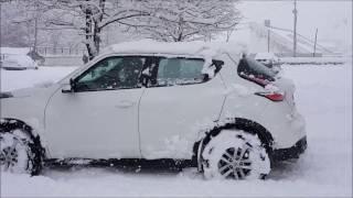 snow test juke