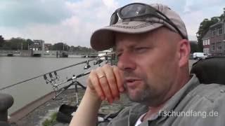 Matze Koch: Aale am Hafen tagsüber - Matzes Mätzchen 05-2015
