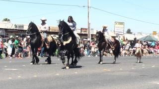 Cinco de mayo parade in Modesto California 2015