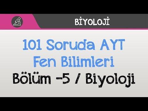 101 Soruda AYT - Fen Bilimleri Bölüm -5 / Biyoloji