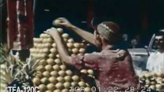 Havana, Cuba Holiday 1959 Historical Film
