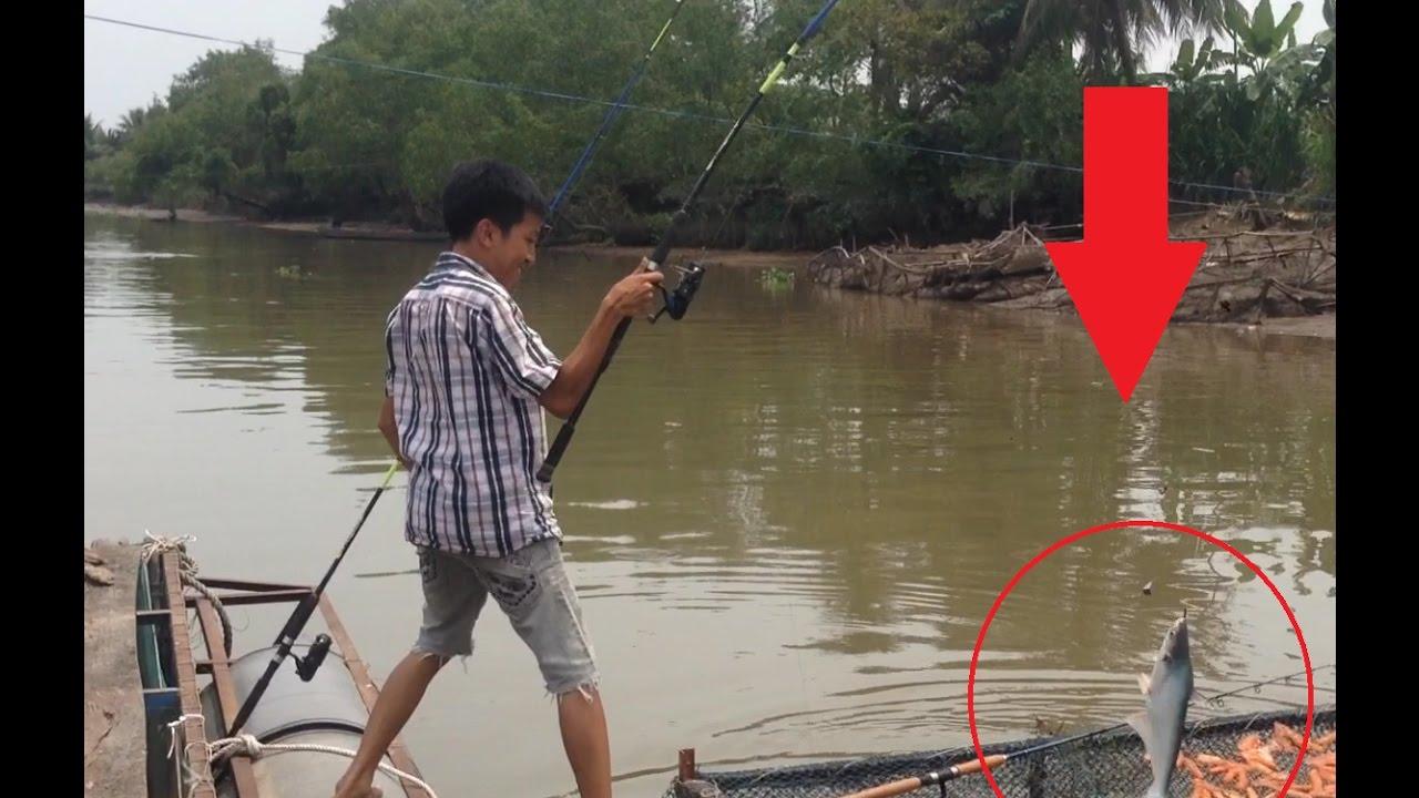 CÂU CÁ TRA TRÊN BÈ VÀ CÁCH LÀM THẼO CÂU CÁ TRA | HUYNH KHOA FISHING