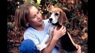 Shiloh (1996) Trailer, Мой друг Шейлок (1996) Трейлер, Шайло