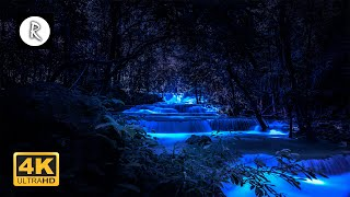 Forest Sounds at Night - Crickets, Creek Water Sounds, Rain \u0026 Thunder 🎧 Nature Sound