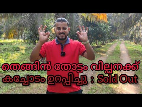 #Agreed#കച്ചോടം ഉറപ്പിച്ചു#Coconut plantation for sale#DJ തെങ്ങിൻ തോട്ടം വില്പനക്ക്#