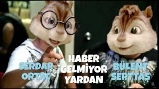 Alvin ve Sincaplar - Haber Gelmiyor Yardan