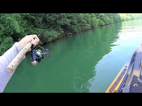 First Kayak Fishing Trip In The Old Town Sportsman Autopilot 136