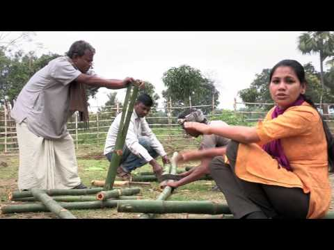 Amrai Pari: Irrigation with simple plastic bottles!