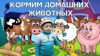 Кормим домашних животных - корову, гусей, кур, индюков и бурёнку.