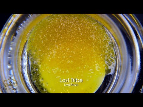 FAT DABS of Lost Tribe Live Resin SAUCE! | Meltshot Monday