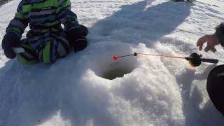 Зимняя рыбалка на водохранилище / Winter fishing on the reservoir