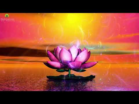 Deep Healing Music Relax Mind Body: Cleanse Anxiety, Stress & Toxins, Magical Sleep Meditation Mp3