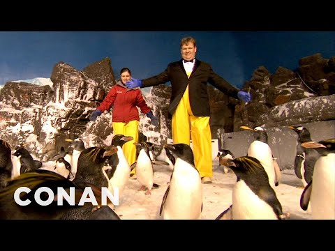 Andy Richter Visits The Seaworld Penguins - CONAN on TBS