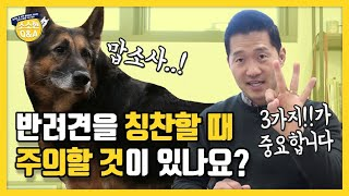 Is there anything I should be careful of when complimenting my dog?|Kang Hyong Wook's Q&A