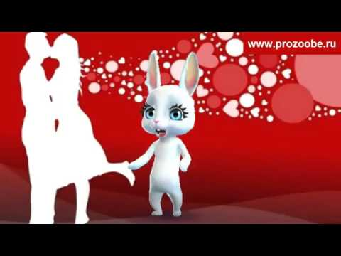 Поздравление подруге на День влюбленных 14 февраля ♡♡♡ Поздравления от Зайки - Ржачные видео приколы