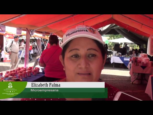 FeriSag Independencia llenó expectativas de productores y consumidores