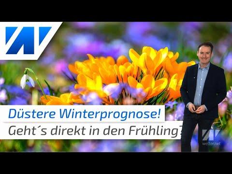 Düstere Winterprognose Für Januar Und Februar: Kommt Direkt Der Frühling?