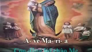 Ave Maria con dang loi chao Me