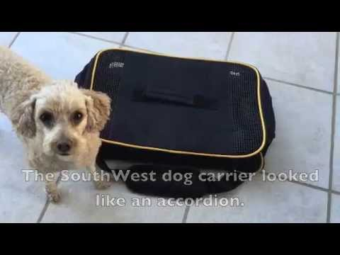Dog Carrier For Under The Seat On Southwest Airline Youtube