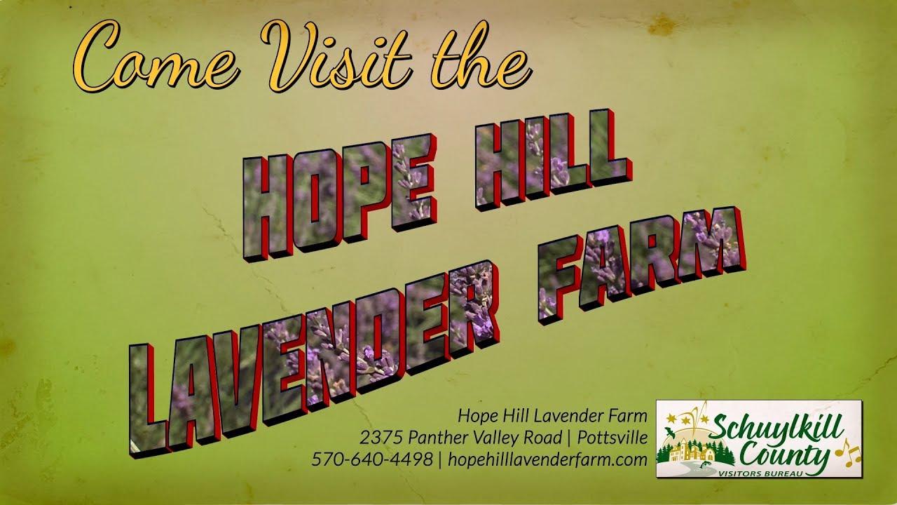 Hope Hill Lavender Farm | Lavender Essential Oil | Schuykill