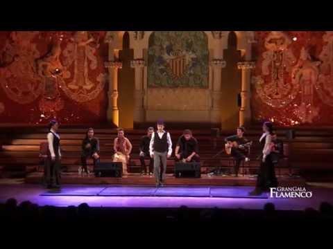 Gran Gala Flamenco - What we do (03)...