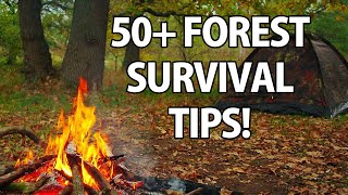 50+ Wilderness Survival Tips!