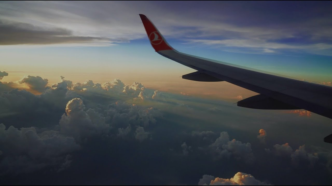 Happy World Environment Day! - Turkish Airlines