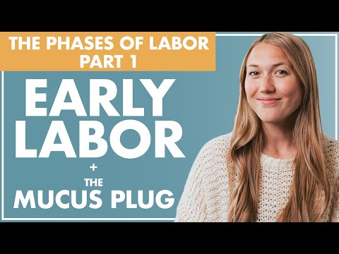 Part 1 EARLY LABOR and the MUCUS PLUG | Birth Doula